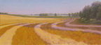 The Wheat Field, Study